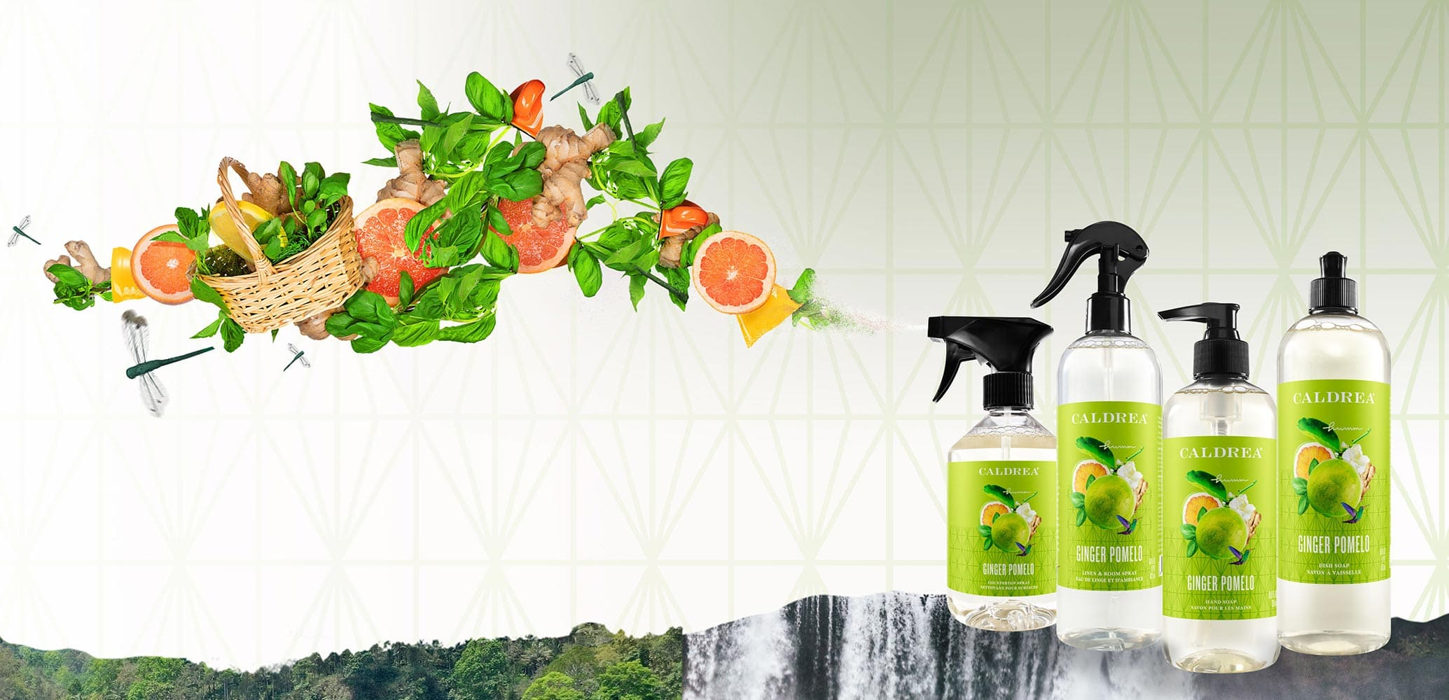 A collection of countertop spray, dish soap, and more spray out elements that encompass our scent: Ginger Pomelo.