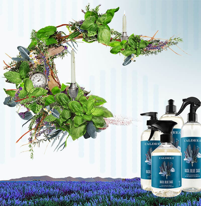 A collection of countertop spray, dish soap, and more spray out elements that encompass our scent: Basil Blue Sage.
