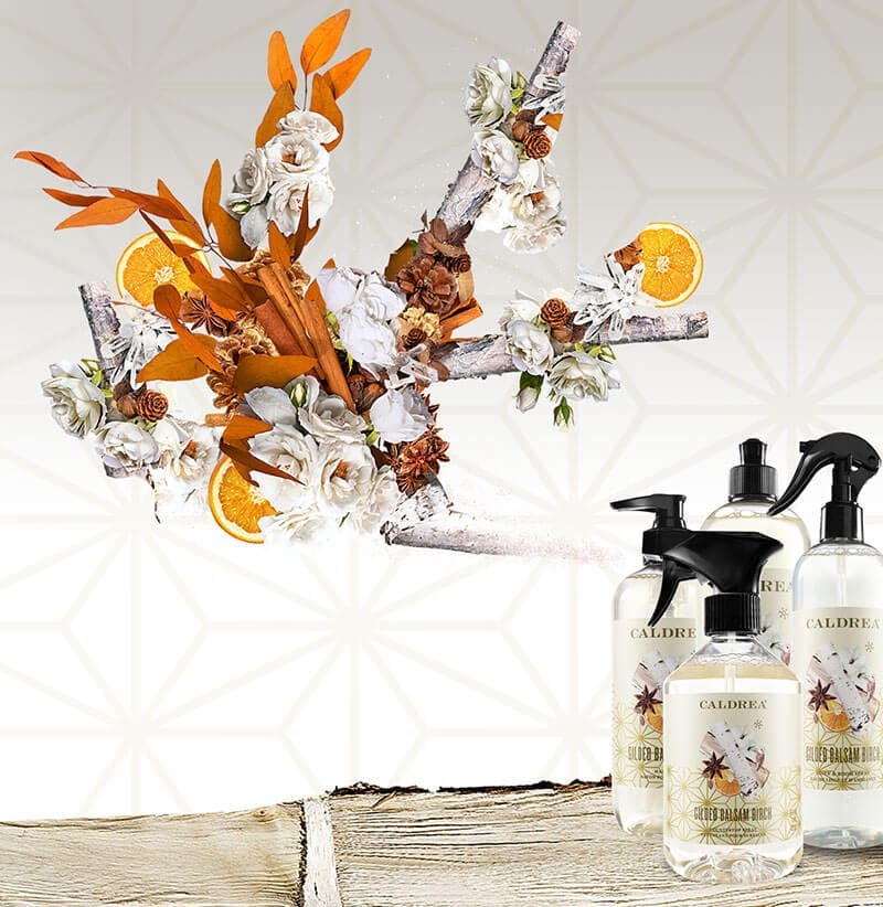 A collection of countertop spray, dish soap, and more spray out elements that encompass our scent: Gilded Balsam Birch.